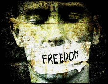 freedomexp
